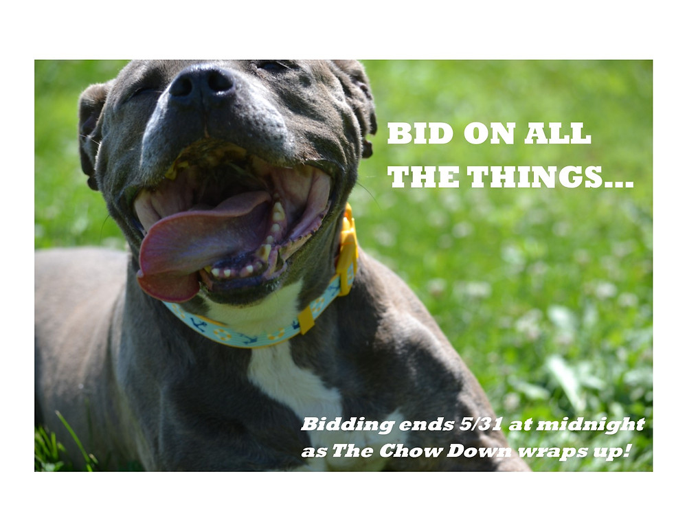 BID HIGH FOR THE ANIMALS!