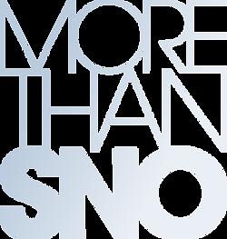 more_than_sno_21.png