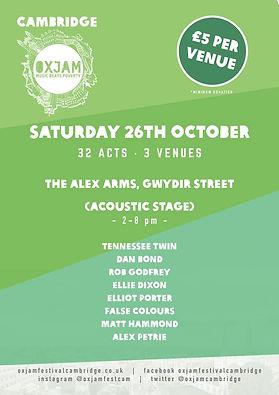 Oxjam Cambridge Gig Poster False Colours British Male/Female Happy/Sad Indie Jangle Folk Duo