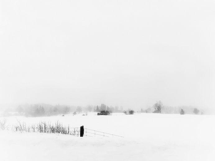 Snowscaping.jpg
