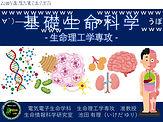 基礎生命科学動画第001回.jpg