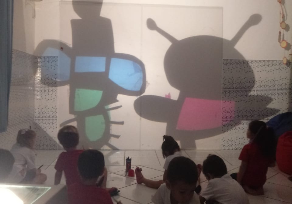 Bichos refletidos na parede