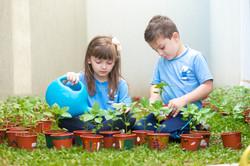 Crianças na horta