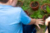 Garoto semeando uma planta