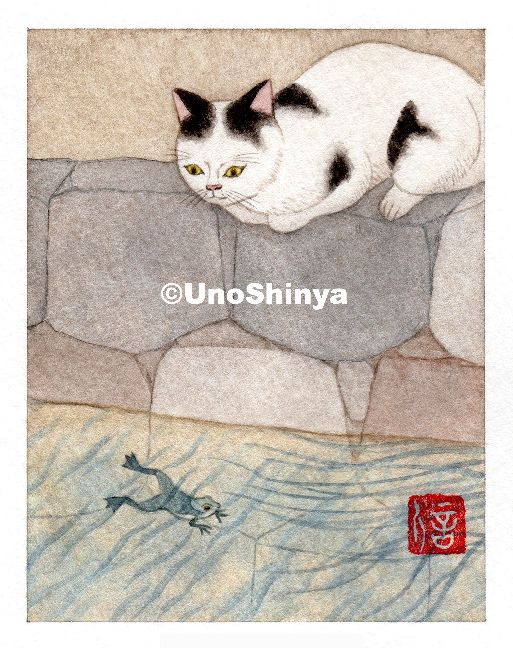 「Cats&Frag 猫と蛙」| shinya uno illustration
