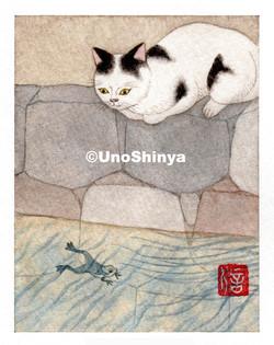 「Cats&Frag 猫と蛙」  shinya uno illustration