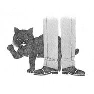 黒猫、漱石について熊本へ.