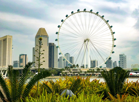 8 Must See In Singapore