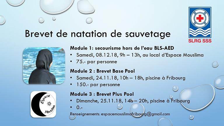 BREVET DE NATATION DE SAUVETAGE