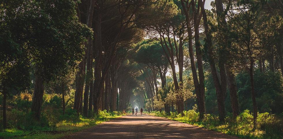 azimut-trekking-in-toscana