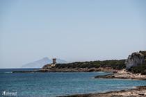 Punta secca e Montecristo