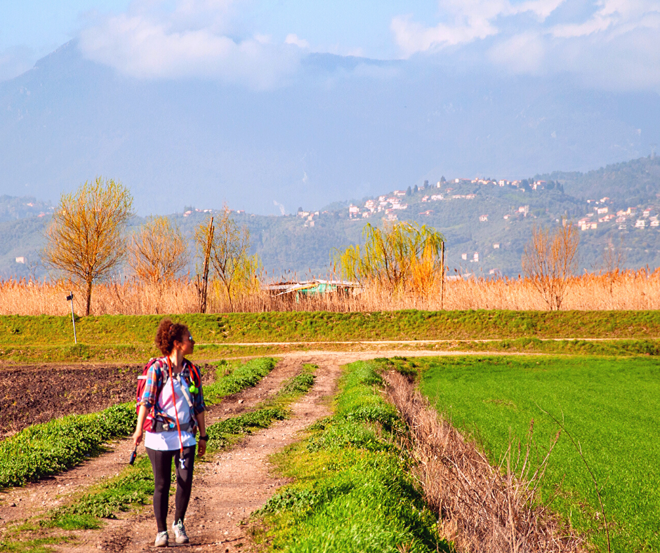 Guida escursionistica Pisa