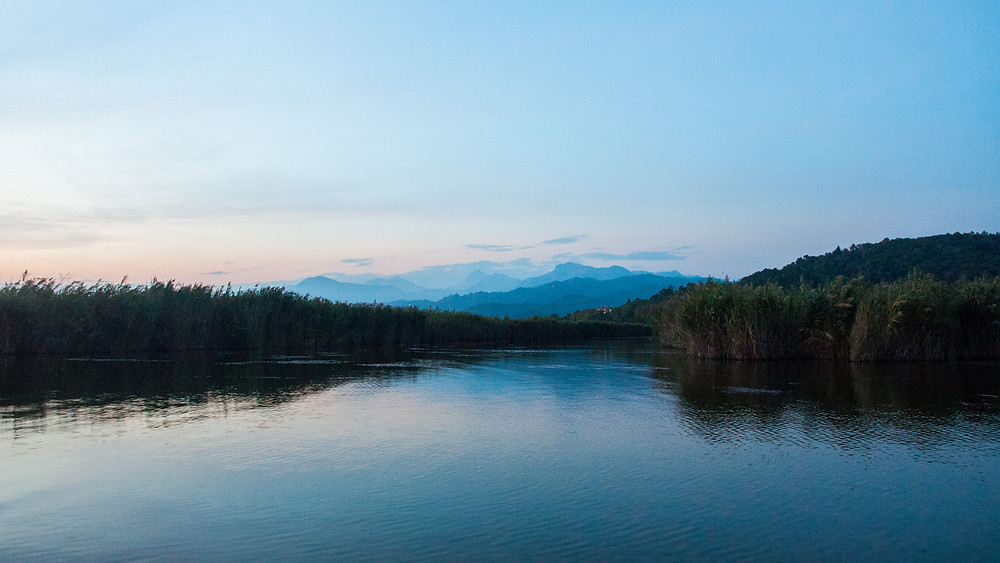 Lago-Massaciuccoli-canali