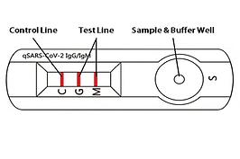 qSARS-CoV-2-IgG_IgM-Rapid-Test.png
