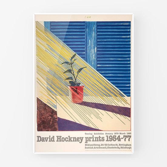 David Hockney / Sun print