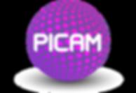 PICAM_LOGO_20_PURPLE_SH.png