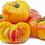 "Thumbnail: Tomato ""Marvel Stripe"" - 6"" pot"