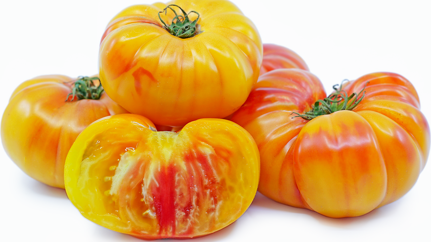 "Tomato ""Marvel Stripe"" - 6"" pot"
