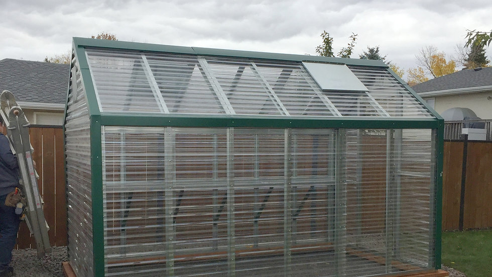 Premium 12' Assembled Greenhouse