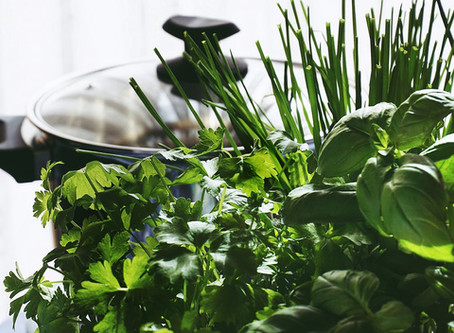 Αρωματικά φυτά και οδηγός περιποίησής τους.