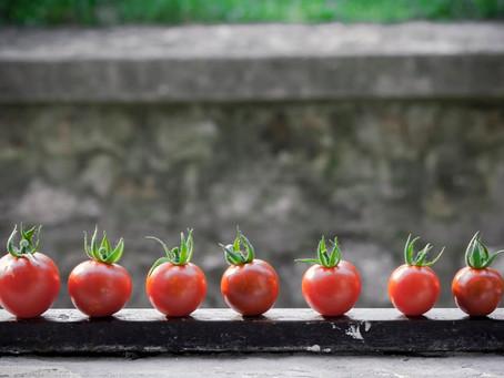 Ντομάτες και το πολύτιμο λυκοπένιο!!