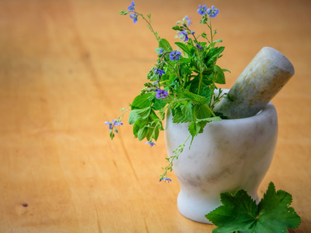 Φαρμακευτικά φυτά-Βότανα!