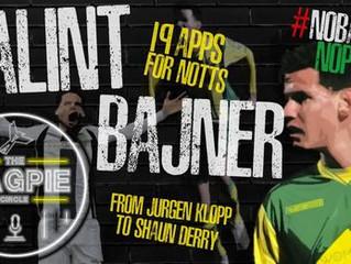 Balint Bajner: No Bajner No Party