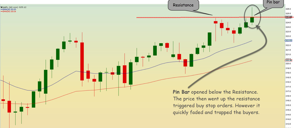 Trading the Pin Bar using Price Action