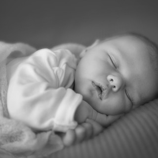 The Sleep Whisperer