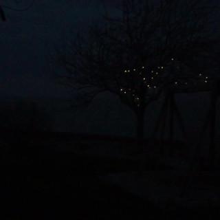 IMG_1494.MOV
