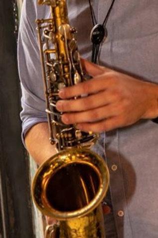 Pro Saxophone Brush-up