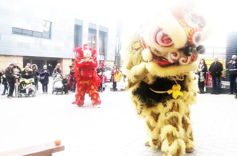 lion chelmsford.jpg