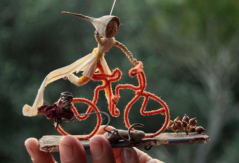 ספלולונ\ית על אופניים