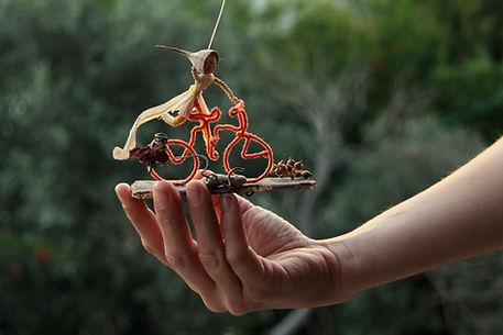 ספלולון על אופניים, מוביילים מהטבע רבקה פרץ יודפת