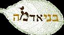 לוגו בלי מלל.jpg