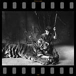 Graham McGrath and tiger in Krull