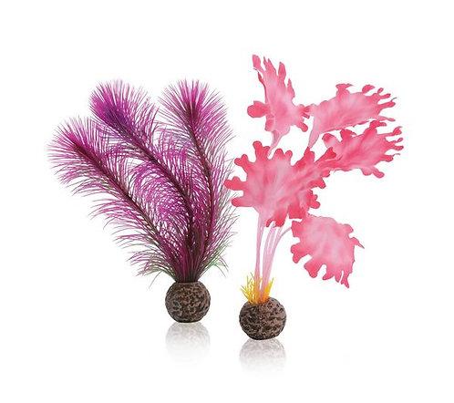 Alghe rosa piccole 46081 per acquario