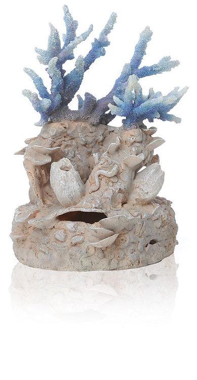 Corallo blu 46121 per acquario
