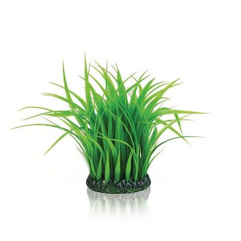 Ciuffo erba medio 46104 per acquario