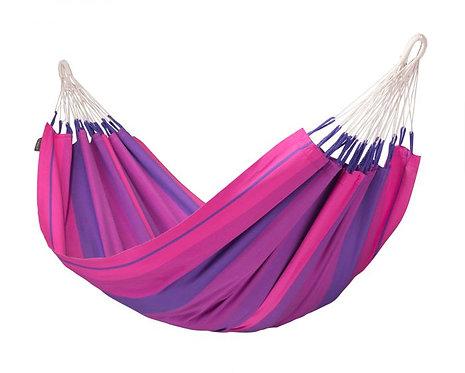 Amaca Orquidea Purple Singola