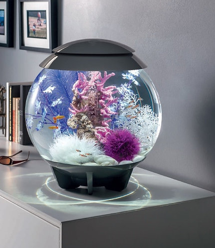 BiOrb acquario Halo