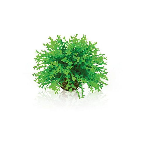 Topiaria rotonda verde 46087 per acquario