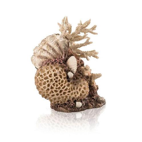Corallo conchiglia naturale 48360 per acquario