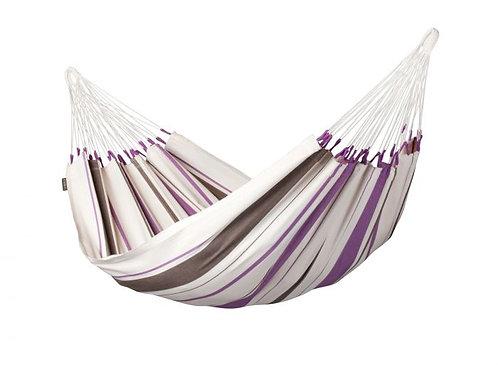 Amaca Caribena Purple Singola
