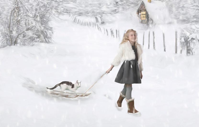 kitten on sled.jpg
