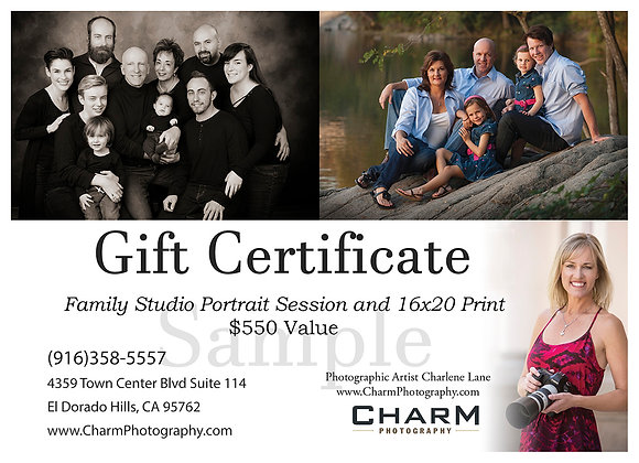 Hour Long Family Portrait Session and One 16 x 20 print