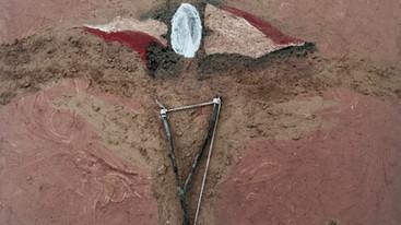 """Pangea Art Republic Abre Sus Puertas al """"Vortex"""" de Papo Colo en el Pulmón de Puerto Rico"""