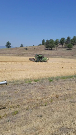 HarvestONE 2.m4v