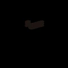 logo PB-01 (1).png