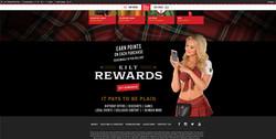 Website Reskins